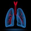Καπετανγιώργης Αθανάσιος - Κέντρο Αναπνευστικής Αποκατάστασης